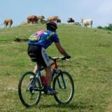 bike_mugello