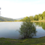 lago_brasimone_sponda