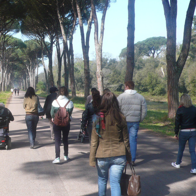 Sightseeing tour journey in Pisa for disabled