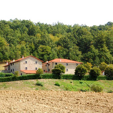 Countryhouse in quiet nature